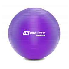 Фітбол 65 см Фіолетовий + насос